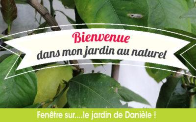 Bienvenue dans mon jardin au naturel…Chez Danièle !