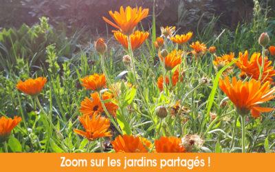 Des jardins florissants et épanouis !